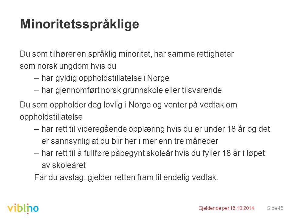 Minoritetsspråklige Du som tilhører en språklig minoritet, har samme rettigheter. som norsk ungdom hvis du.