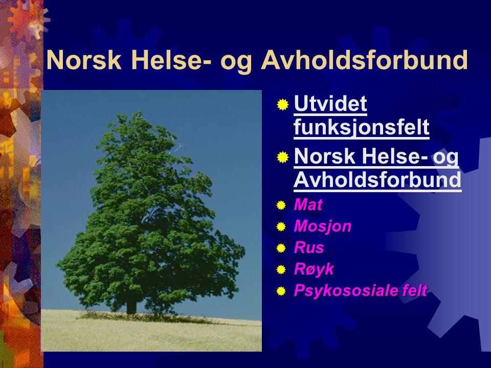Norsk Helse- og Avholdsforbund