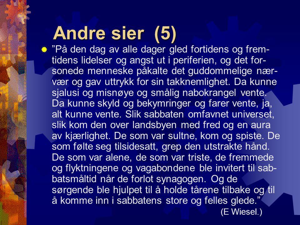 Andre sier (5)