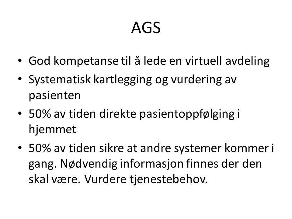 AGS God kompetanse til å lede en virtuell avdeling