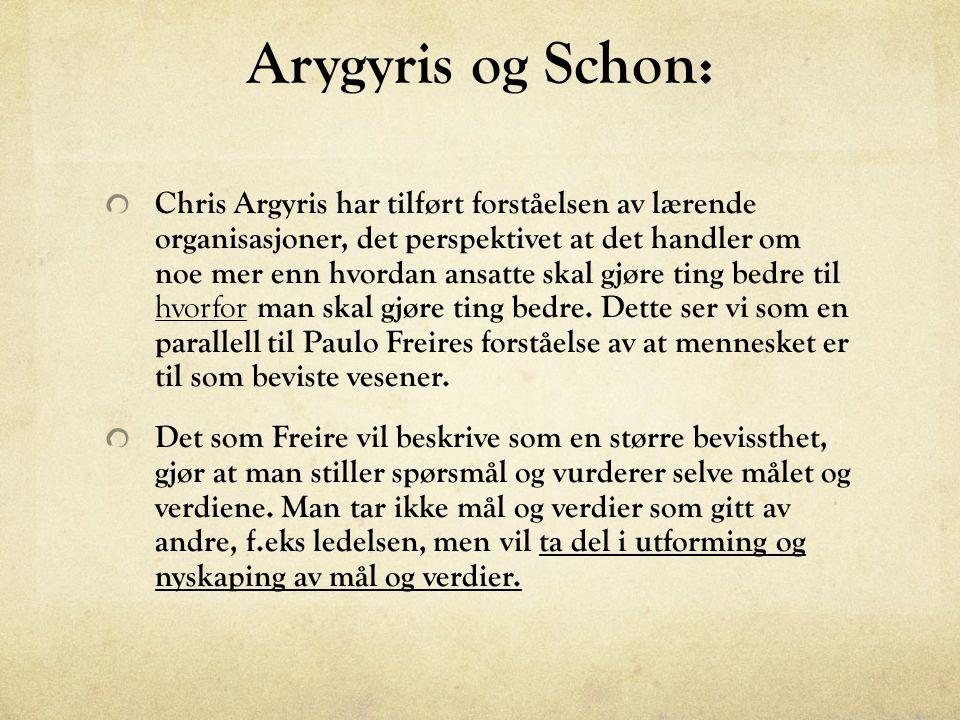 Arygyris og Schon: