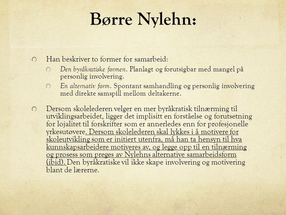 Børre Nylehn: Han beskriver to former for samarbeid: