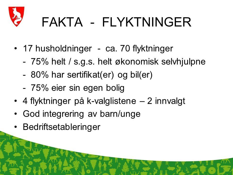 FAKTA - FLYKTNINGER 17 husholdninger - ca. 70 flyktninger