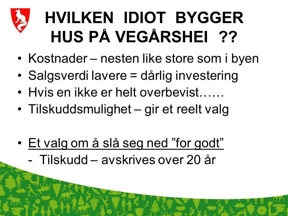HVILKEN IDIOT BYGGER HUS PÅ VEGÅRSHEI