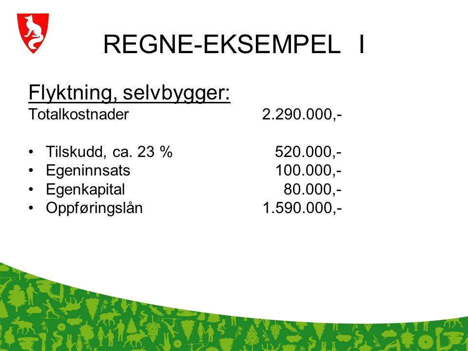 REGNE-EKSEMPEL I Flyktning, selvbygger: Totalkostnader 2.290.000,-