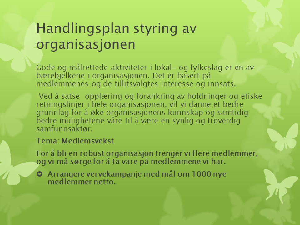 Handlingsplan styring av organisasjonen