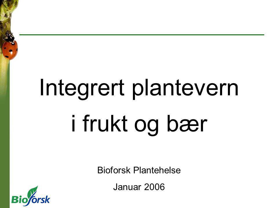 i frukt og bær Bioforsk Plantehelse Januar 2006