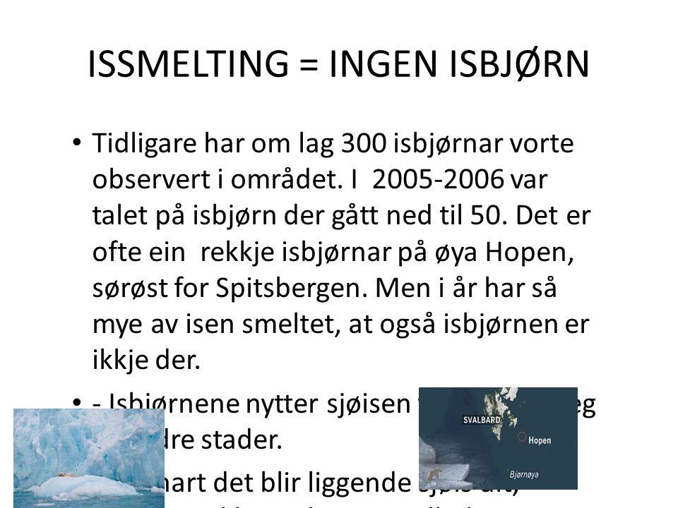 ISSMELTING = INGEN ISBJØRN