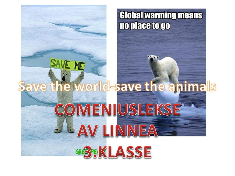 Save the world-save the animals