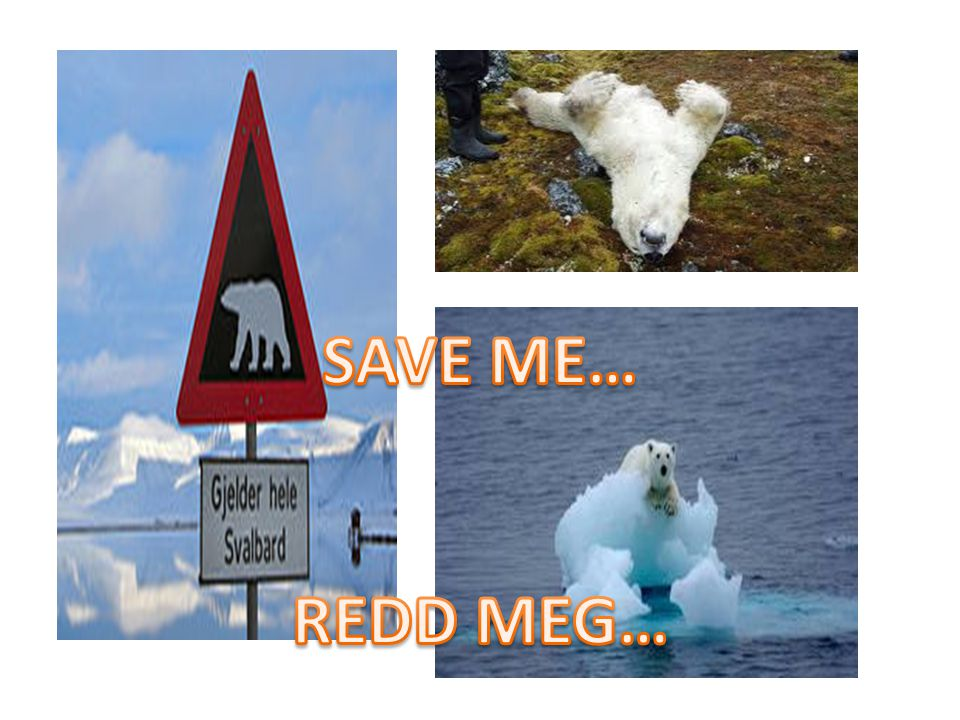 SAVE ME… REDD MEG…