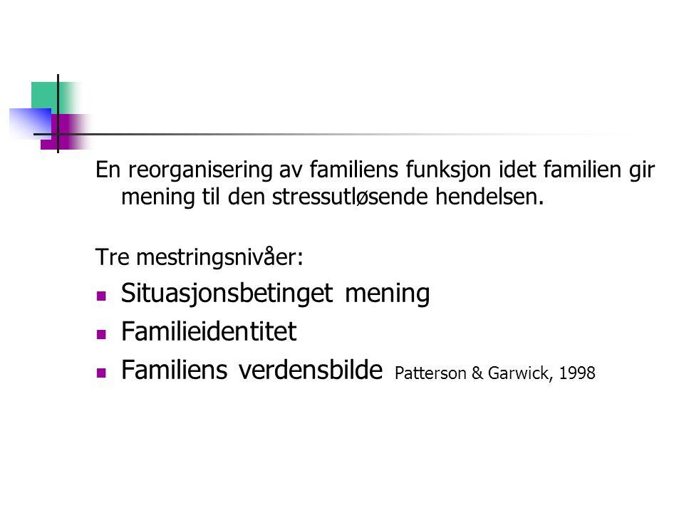Situasjonsbetinget mening Familieidentitet