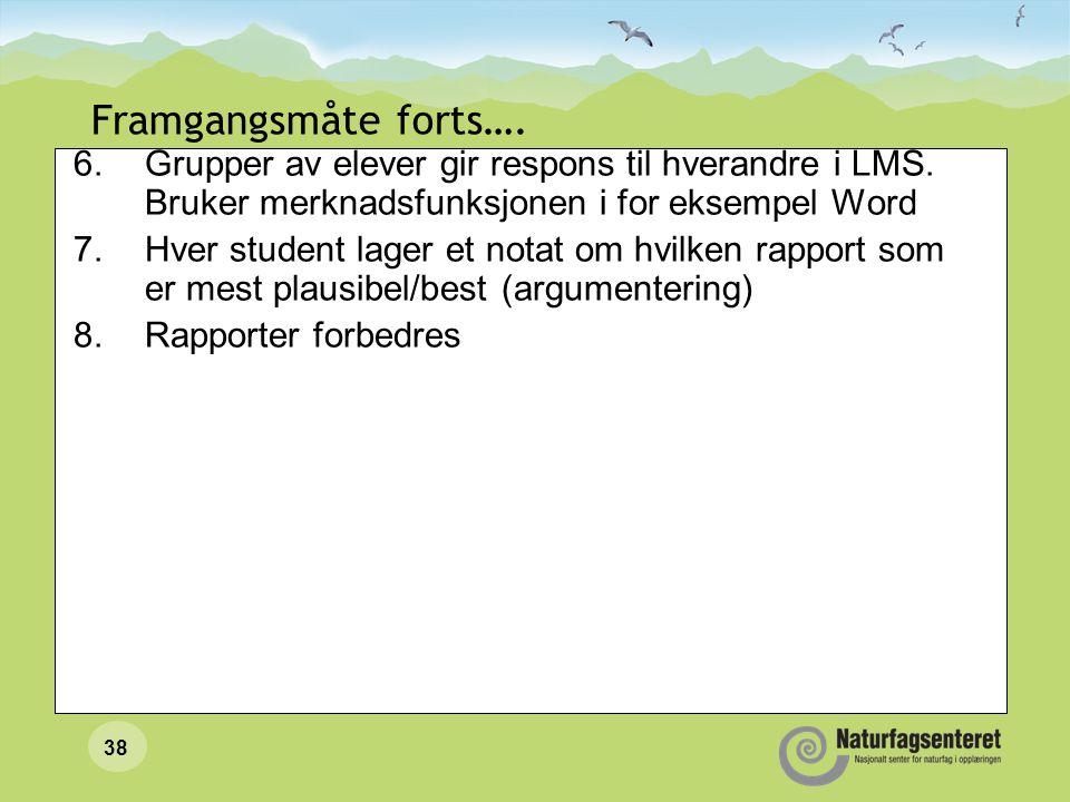 Framgangsmåte forts…. Grupper av elever gir respons til hverandre i LMS. Bruker merknadsfunksjonen i for eksempel Word.