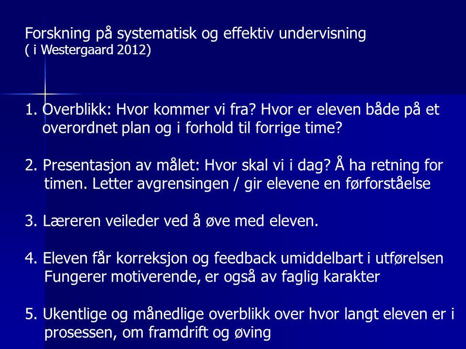 Forskning på systematisk og effektiv undervisning