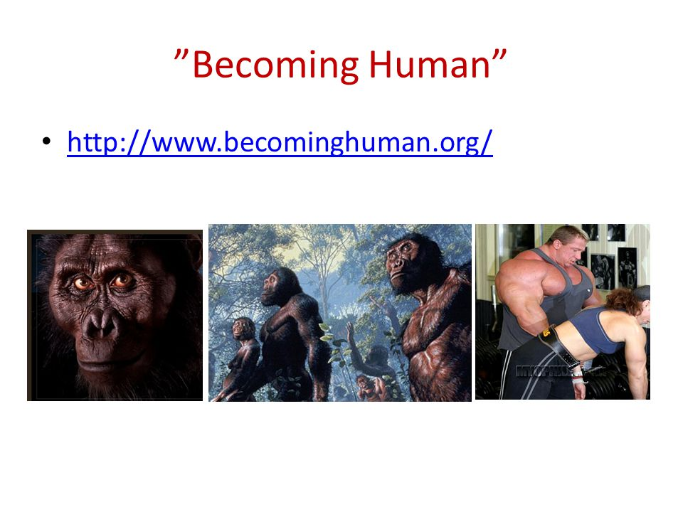 Becoming Human http://www.becominghuman.org/