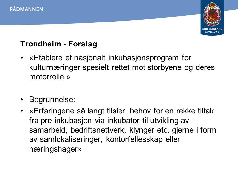 Trondheim - Forslag «Etablere et nasjonalt inkubasjonsprogram for kulturnæringer spesielt rettet mot storbyene og deres motorrolle.»