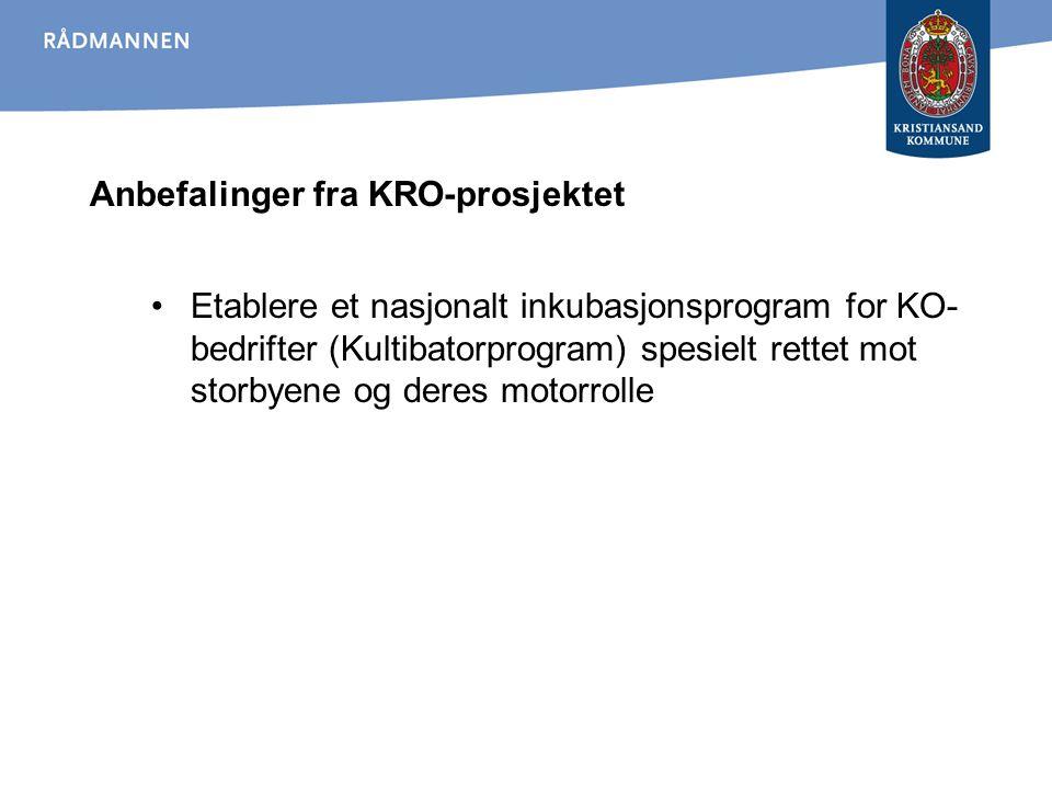 Anbefalinger fra KRO-prosjektet