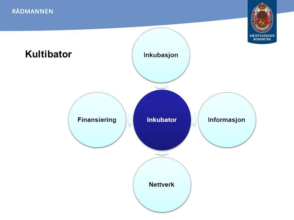Kultibator Inkubator Inkubasjon Informasjon Nettverk Finansiering