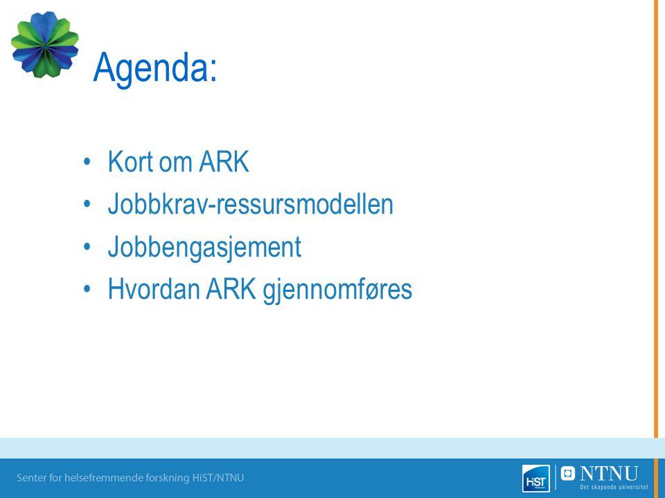 Agenda: Kort om ARK Jobbkrav-ressursmodellen Jobbengasjement