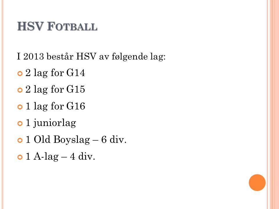 HSV Fotball 2 lag for G14 2 lag for G15 1 lag for G16 1 juniorlag