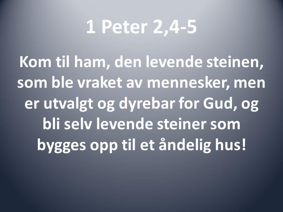1 Peter 2,4-5