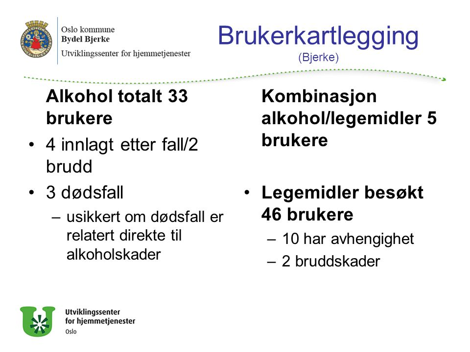 Brukerkartlegging (Bjerke)