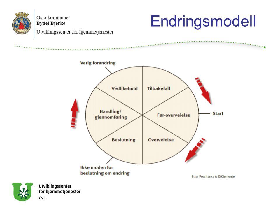 Endringsmodell Hva blir vår rolle, hvordan hjelpe og forstå en som er rusavhengig/står i fare for å bli det