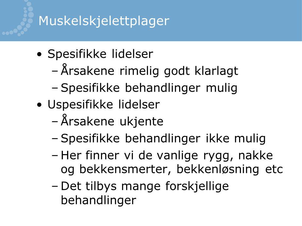 Muskelskjelettplager