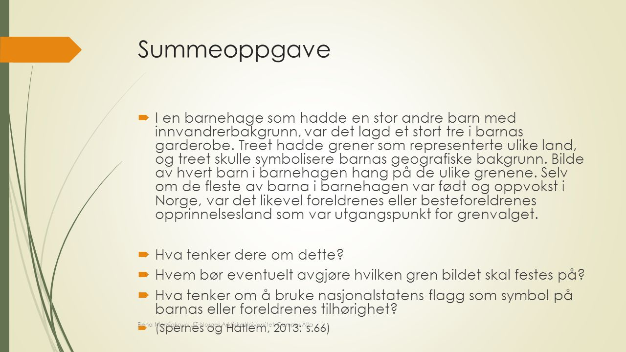 Summeoppgave