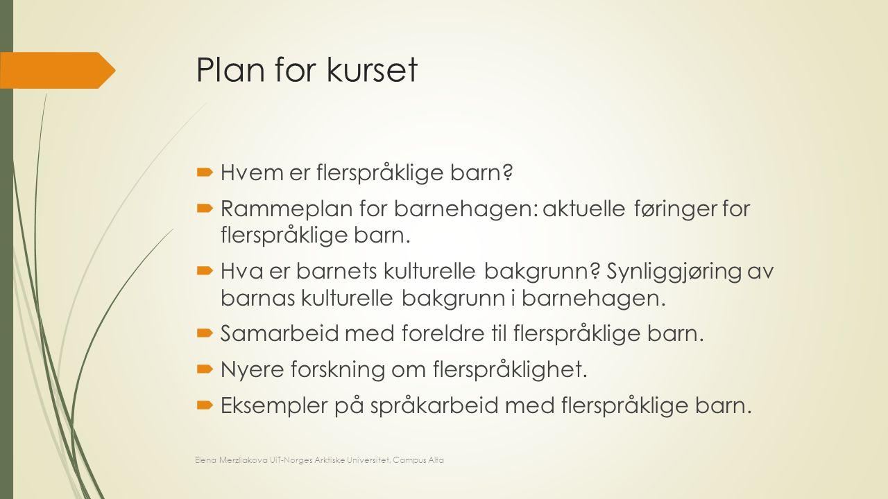 Plan for kurset Hvem er flerspråklige barn