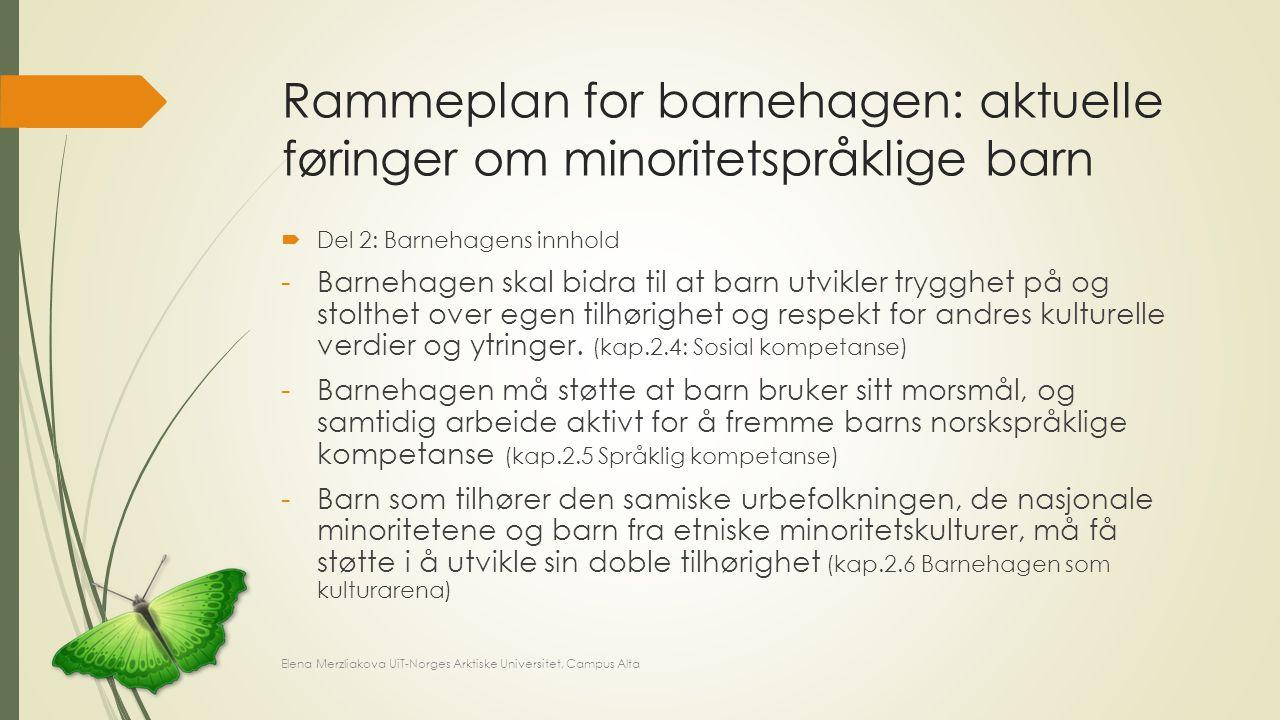 Rammeplan for barnehagen: aktuelle føringer om minoritetspråklige barn