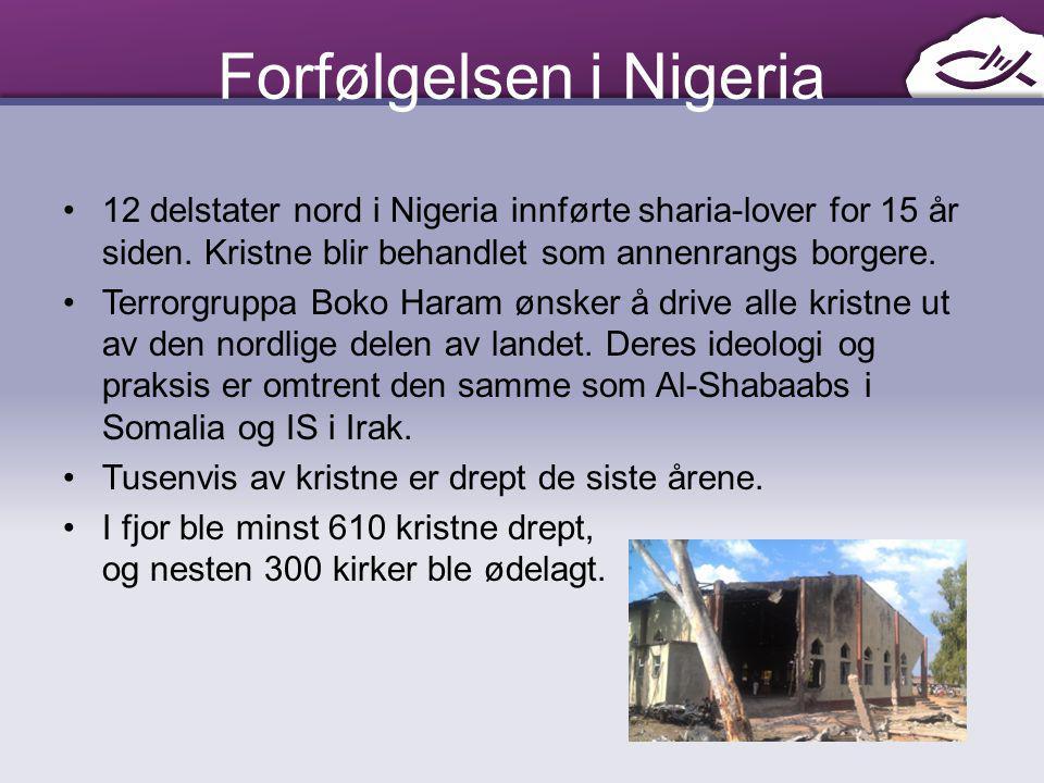 Forfølgelsen i Nigeria
