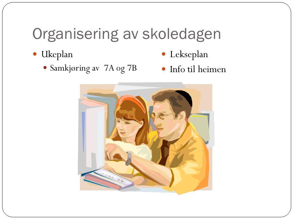 Organisering av skoledagen