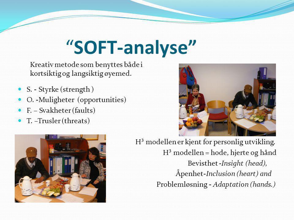 SOFT-analyse Kreativ metode som benyttes både i kortsiktig og langsiktig øyemed. S. - Styrke (strength )