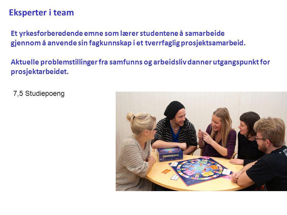 Eksperter i team Et yrkesforberedende emne som lærer studentene å samarbeide. gjennom å anvende sin fagkunnskap i et tverrfaglig prosjektsamarbeid.