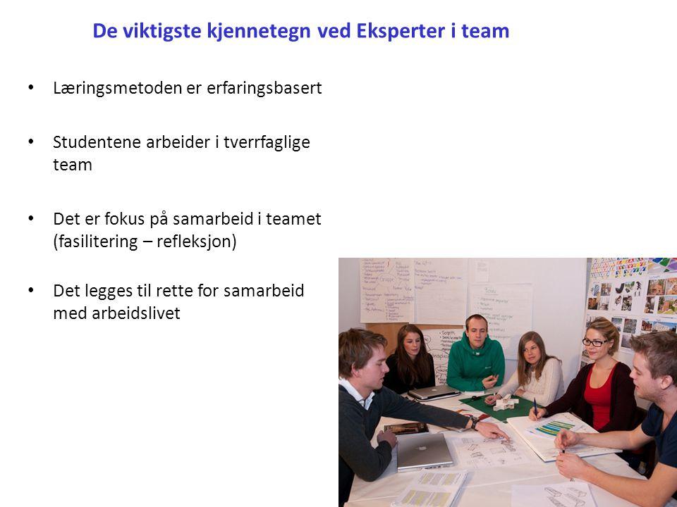 De viktigste kjennetegn ved Eksperter i team
