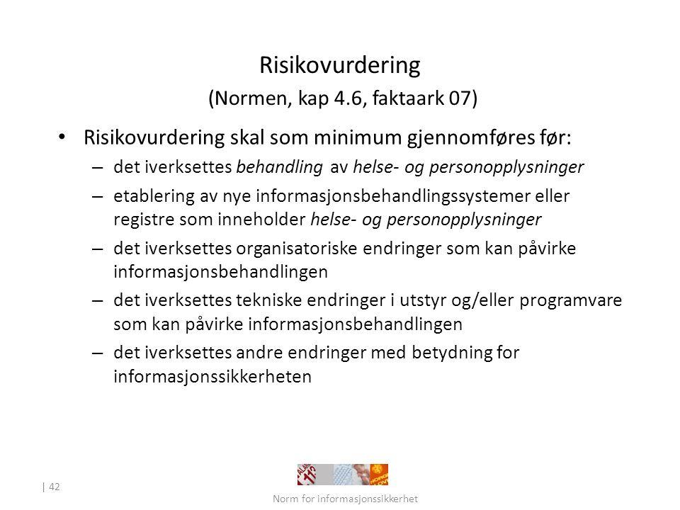 Risikovurdering (Normen, kap 4.6, faktaark 07)