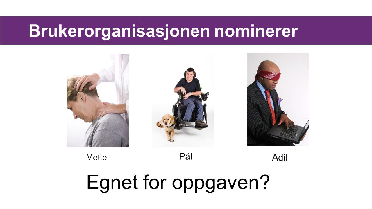 Brukerorganisasjonen nominerer