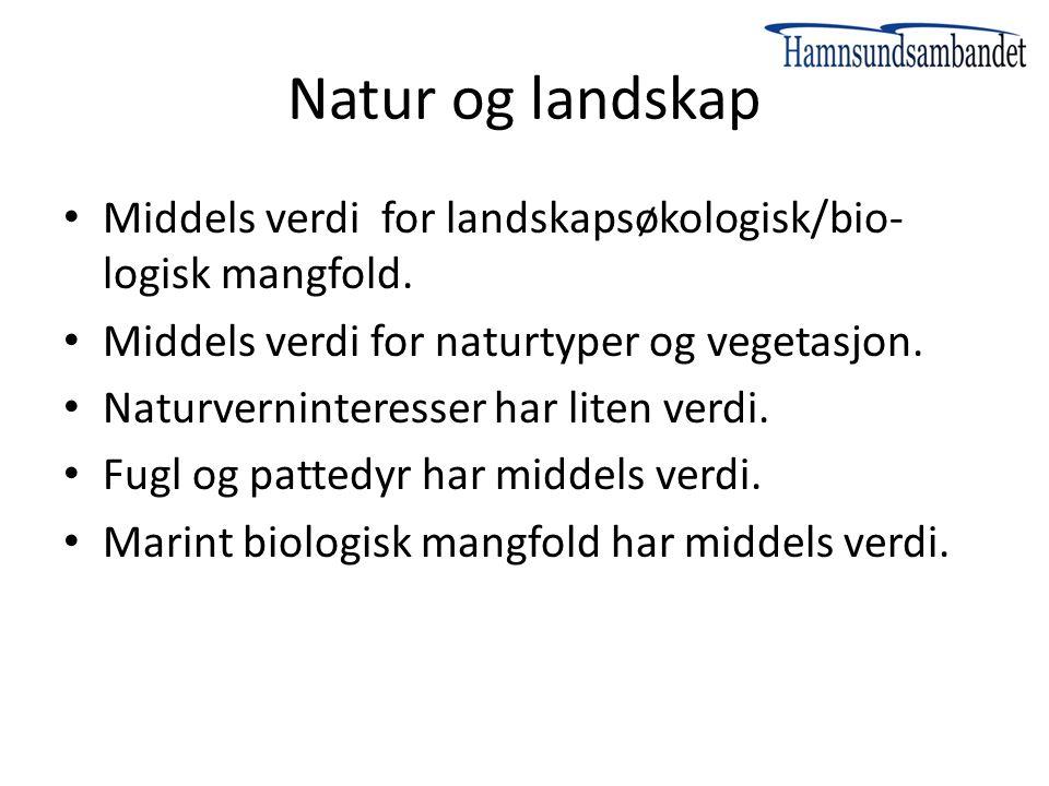 Natur og landskap Middels verdi for landskapsøkologisk/bio-logisk mangfold. Middels verdi for naturtyper og vegetasjon.