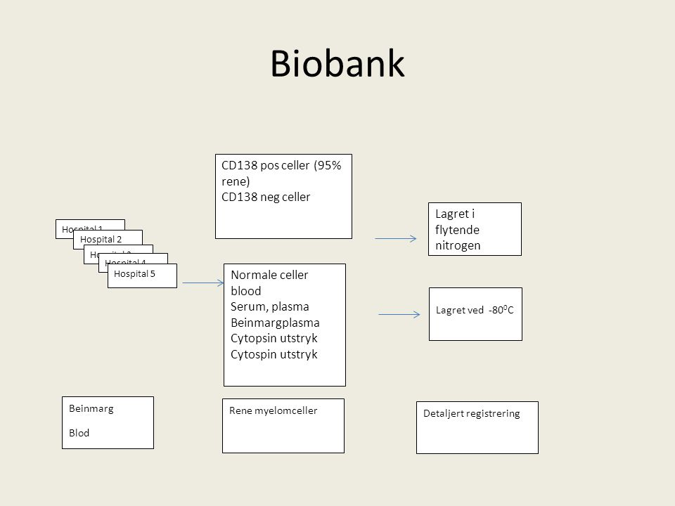 Biobank CD138 pos celler (95% rene) CD138 neg celler