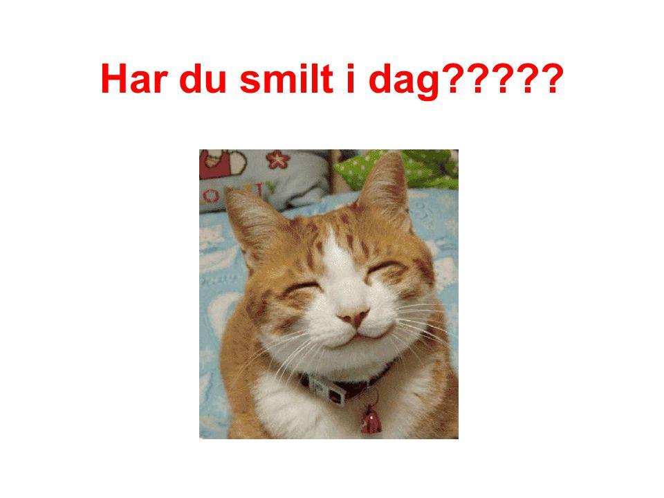 Har du smilt i dag
