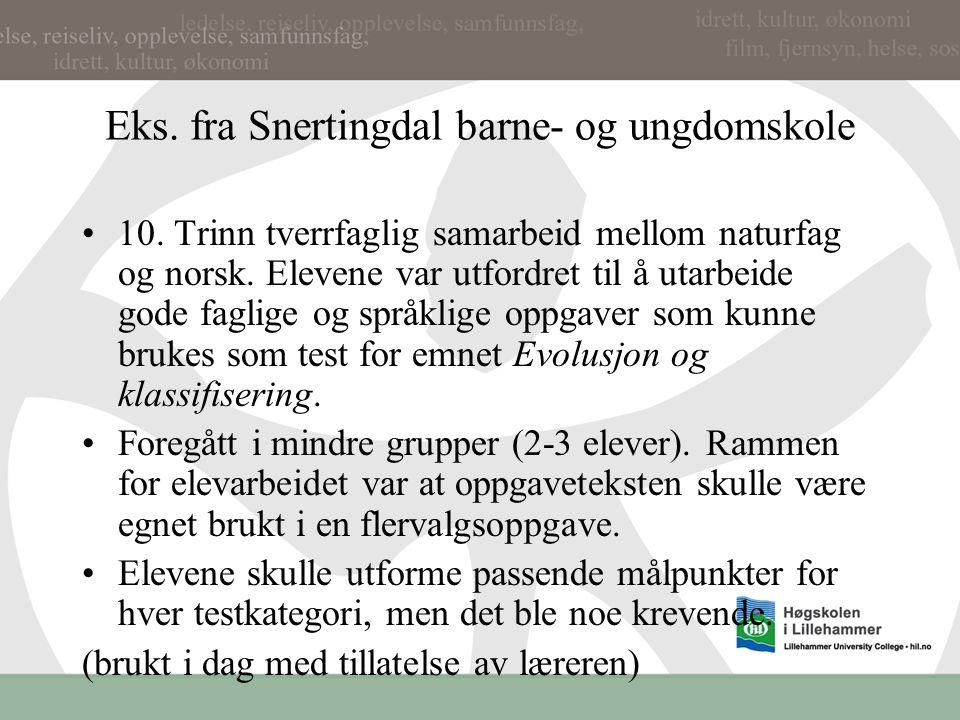 Eks. fra Snertingdal barne- og ungdomskole