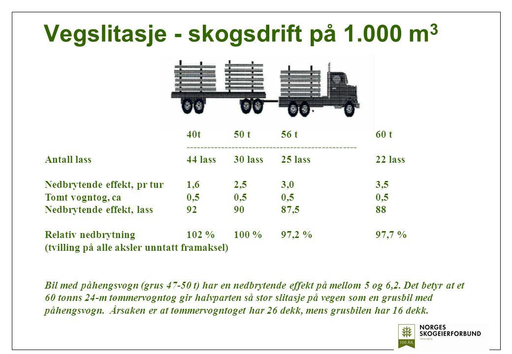 Vegslitasje - skogsdrift på 1.000 m3