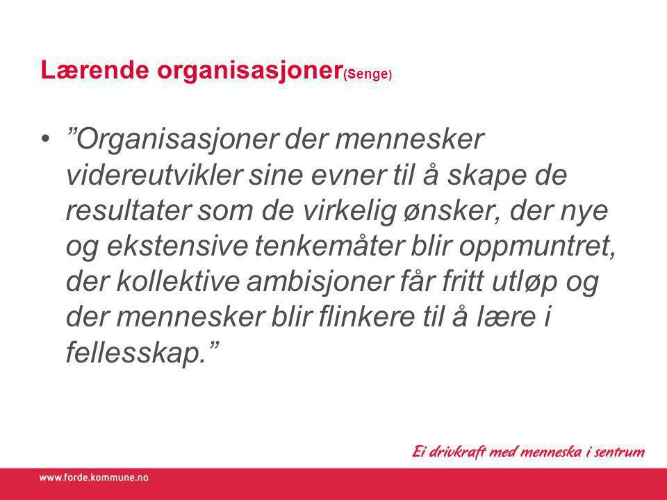 Lærende organisasjoner(Senge)