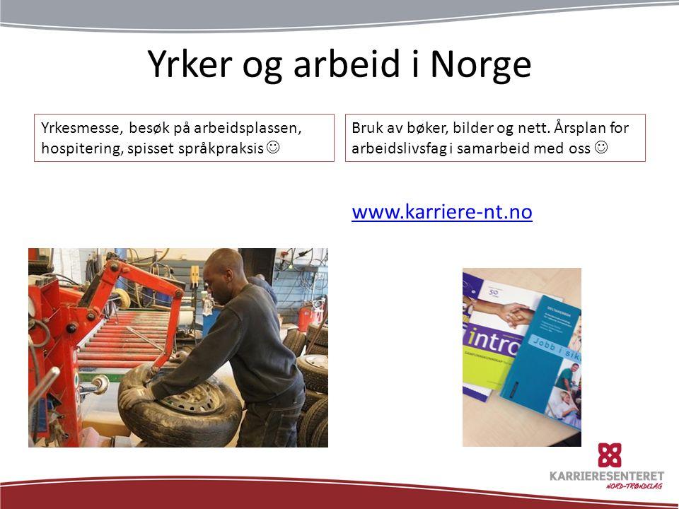 Yrker og arbeid i Norge www.karriere-nt.no