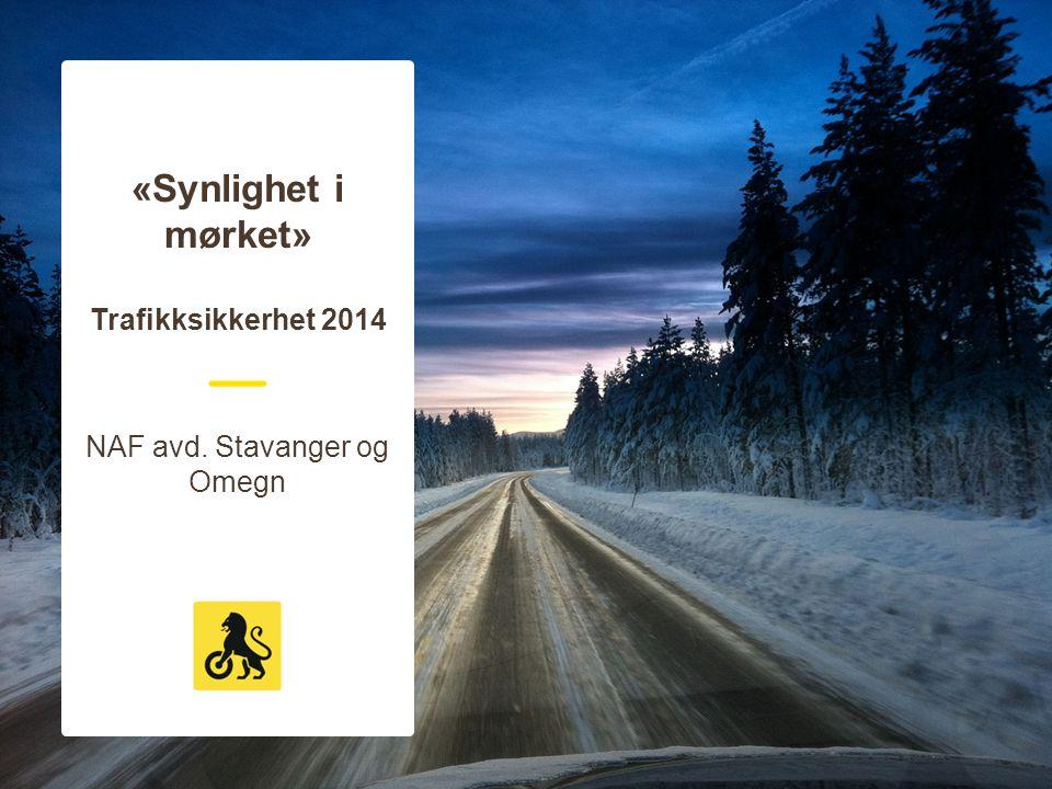«Synlighet i mørket» Trafikksikkerhet 2014