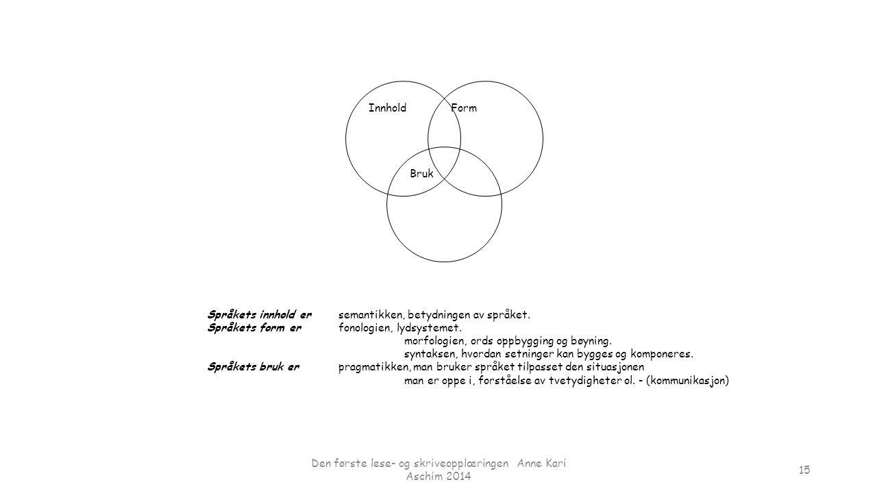 Den første lese- og skriveopplæringen Anne Kari Aschim 2014