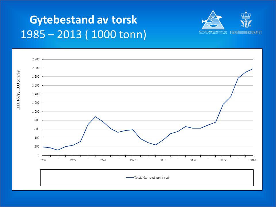Gytebestand av torsk 1985 – 2013 ( 1000 tonn)