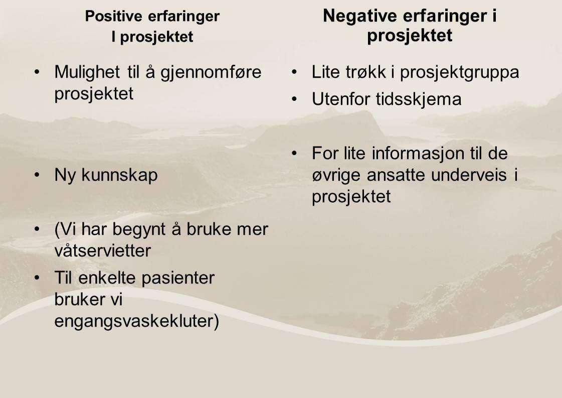 Negative erfaringer i prosjektet