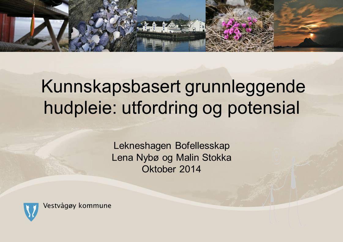 Kunnskapsbasert grunnleggende hudpleie: utfordring og potensial Lekneshagen Bofellesskap Lena Nybø og Malin Stokka Oktober 2014