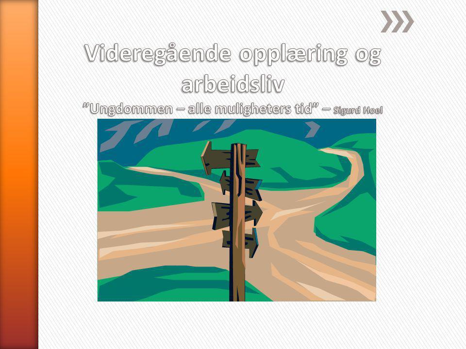 Videregående opplæring og arbeidsliv Ungdommen – alle muligheters tid – Sigurd Hoel
